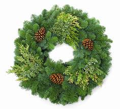 Wreath imagesQ0ZCS1EO