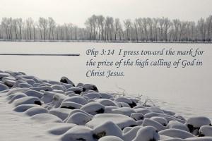 Philippians 3_14