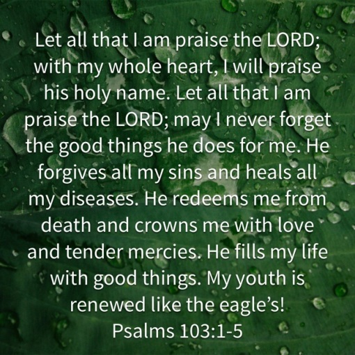 Psalm 103 1_5