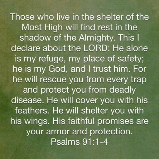 Psalm 91-1-4