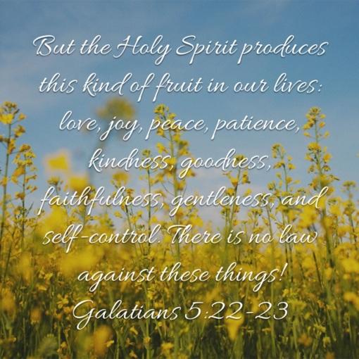 Galatians 5_22_23