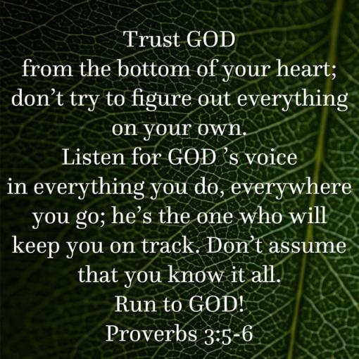 Proverbs 3.5.6